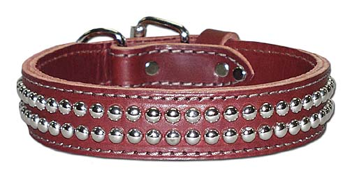 leather stud dog collar